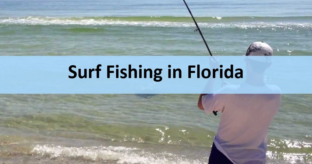 Florida fishing without boat